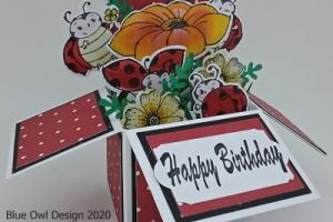box card 20 lady bugs