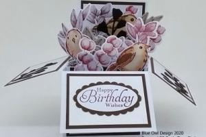 Box Card 25 Sepia Tones Birds