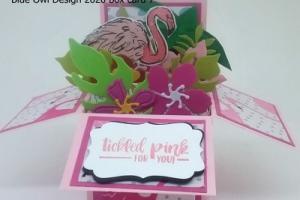box card 7 flamingo