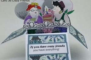 Box Card 36 Crazy Friends
